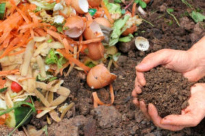 Du compost à disposition